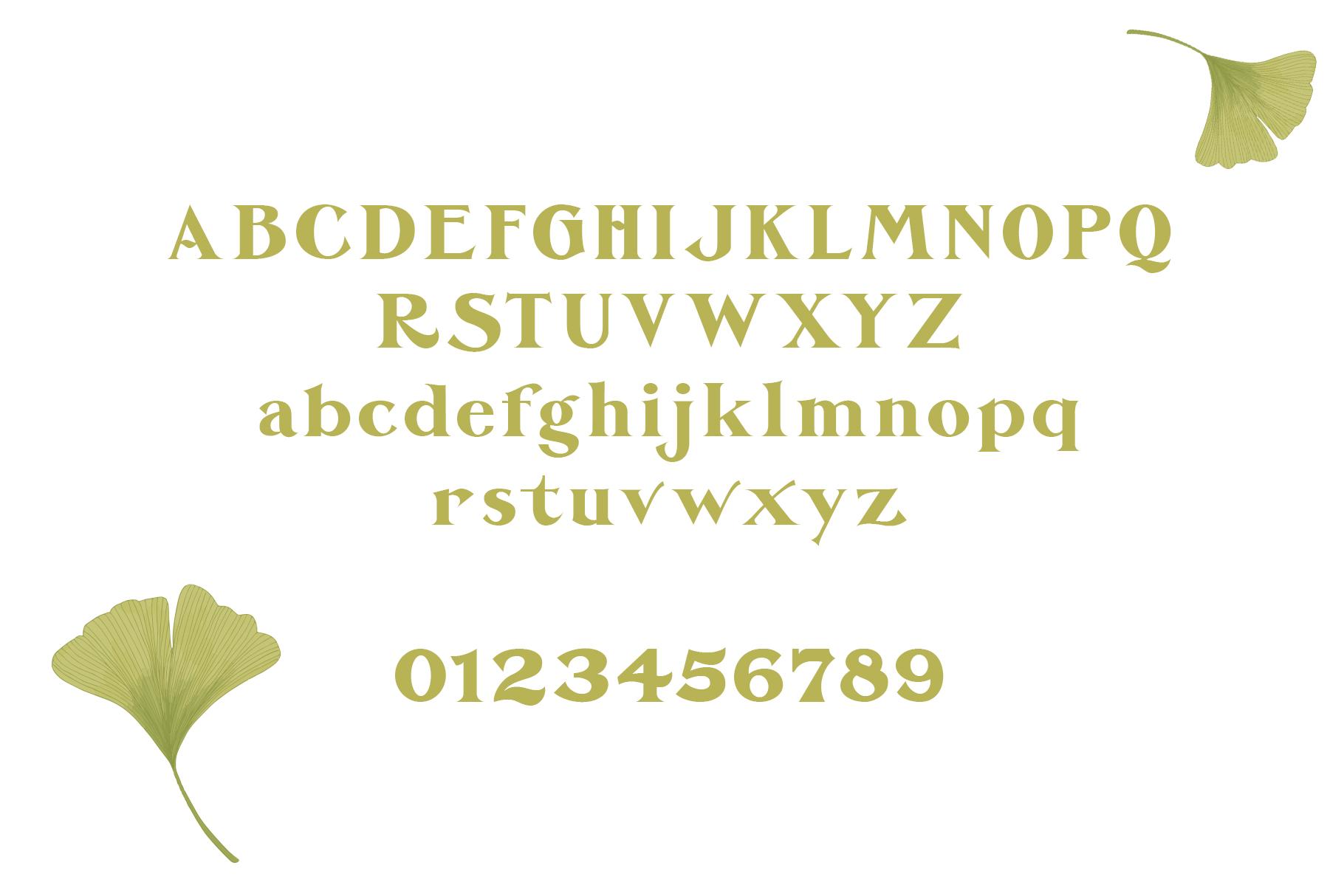De Ginkgo Font example image 9