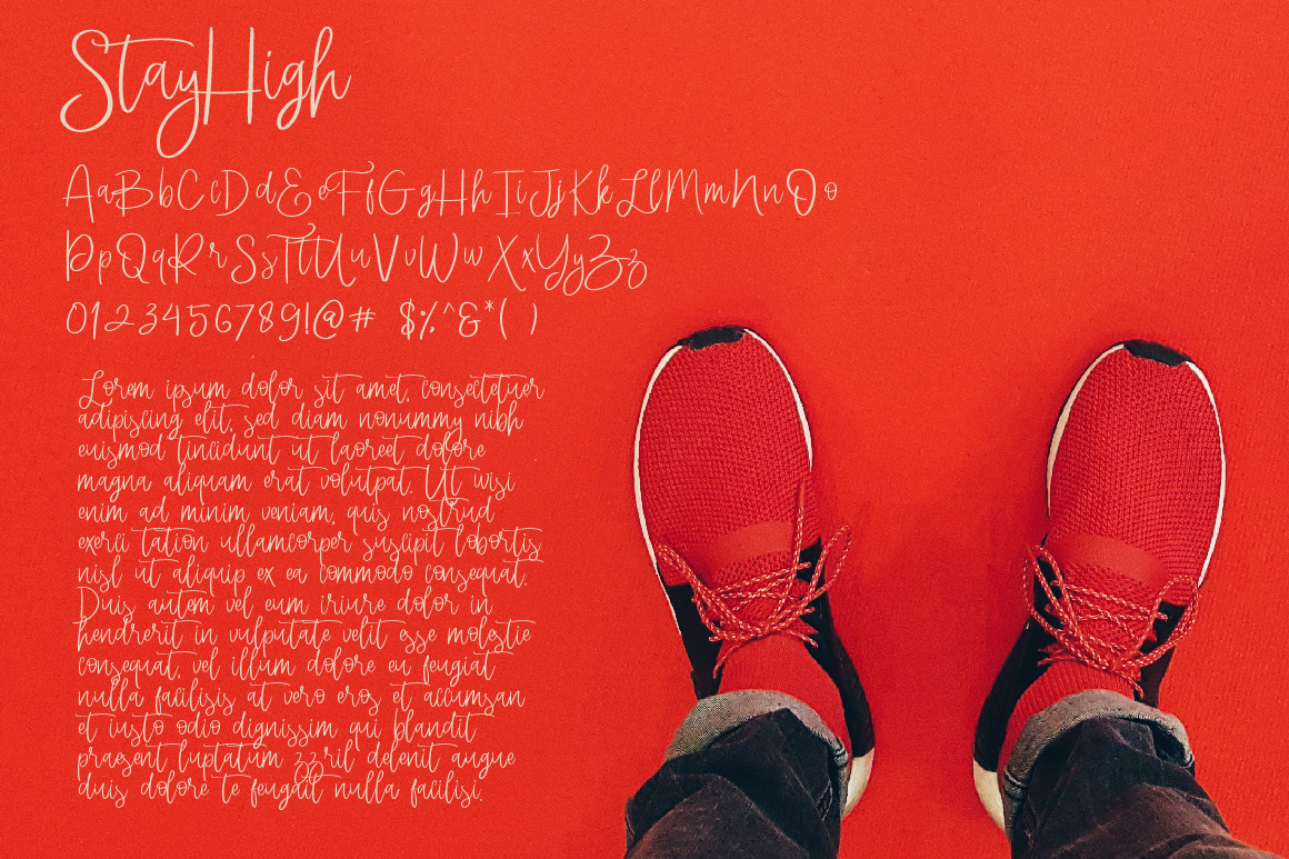 StayHigh Signature Font example image 5