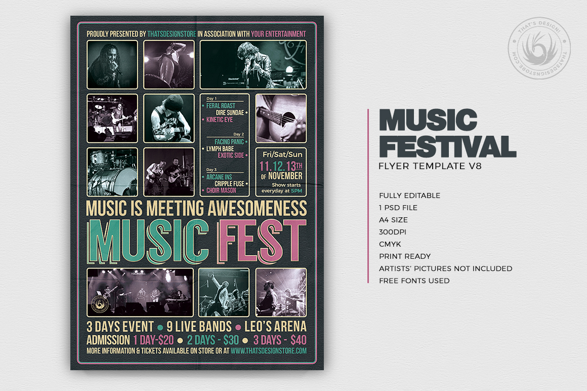 Music Festival Flyer Template V8 example image 2
