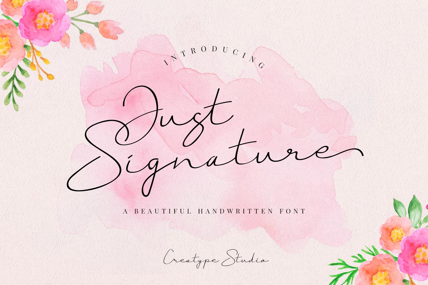 Just Signature Script example image 1