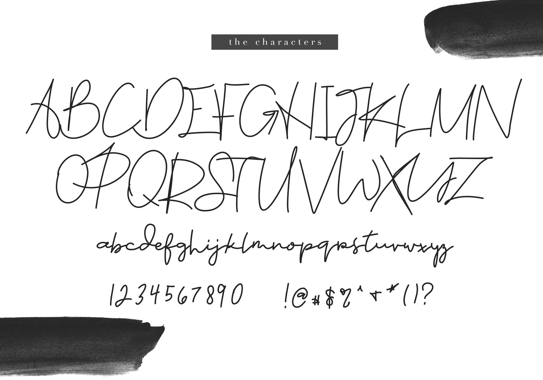 Kandi - A Handwritten Signature Font example image 8