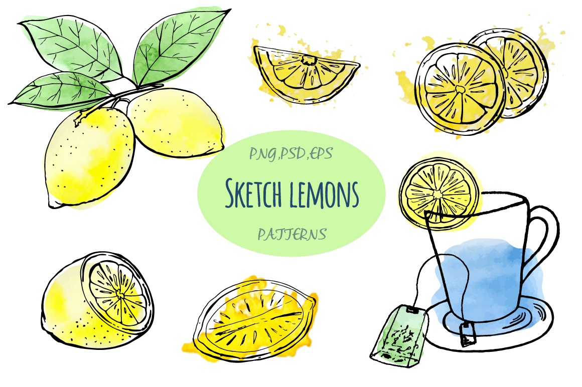 Sketch lemons. Watercolor. Vector. example image 1