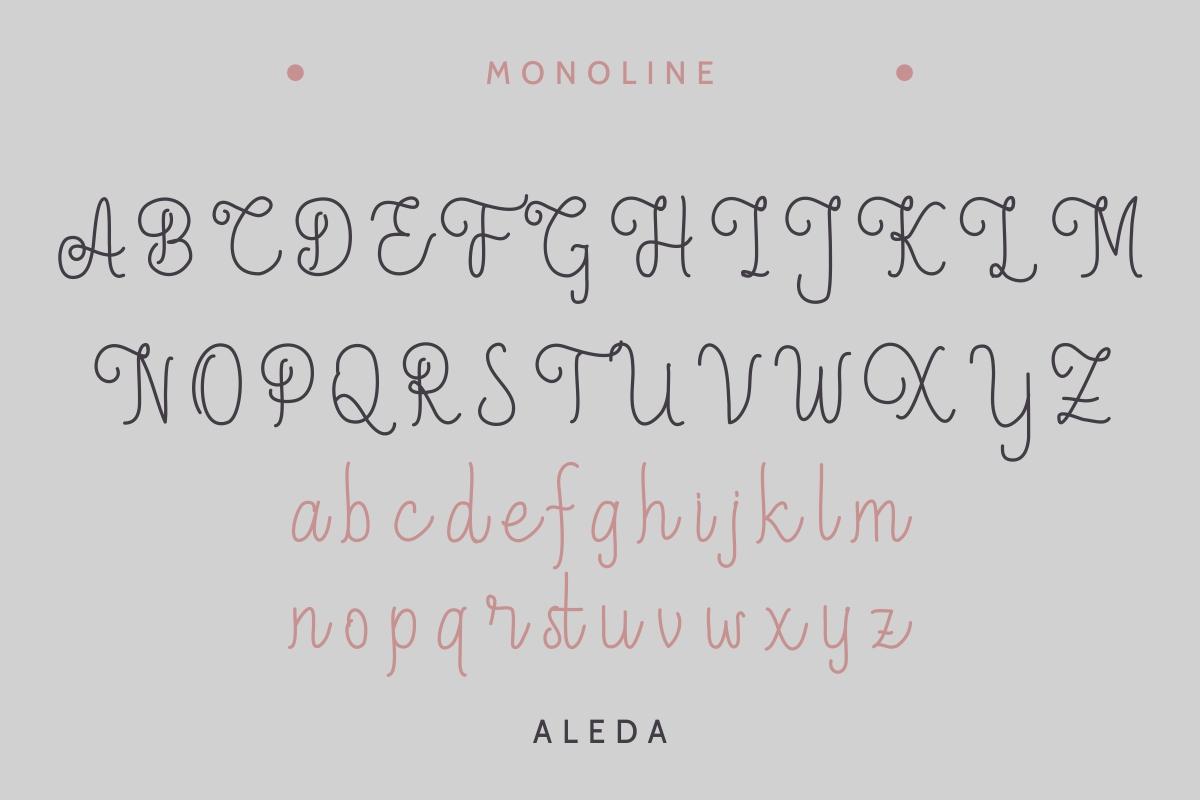 Aleda example image 5