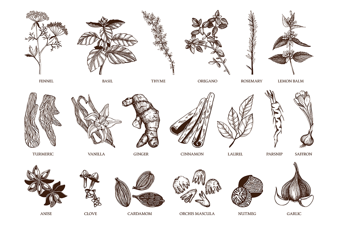 Ink Hand Drawn Spice Collection example image 6