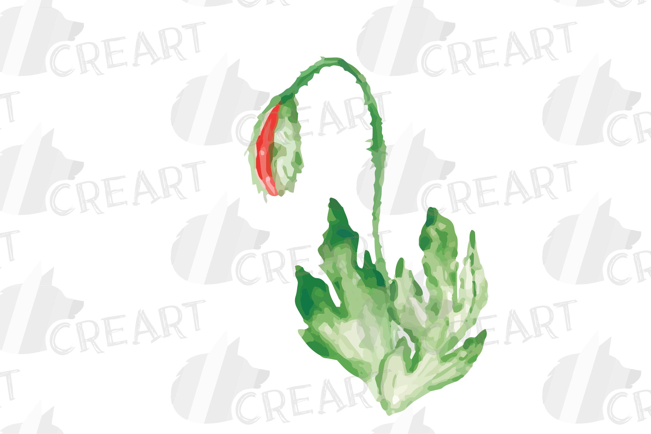 Watercolor red poppy flower and leaf decor clip art. Poppies example image 8