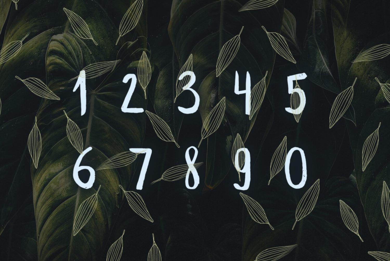 Leafy example image 3