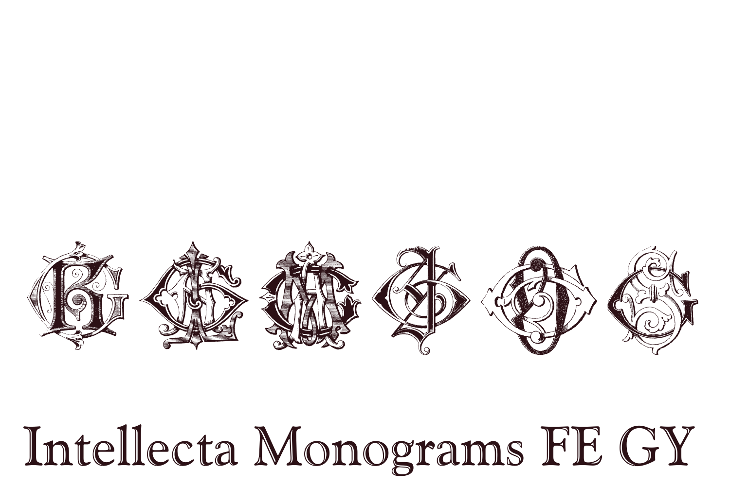 Intellecta Monograms FE GY example image 7