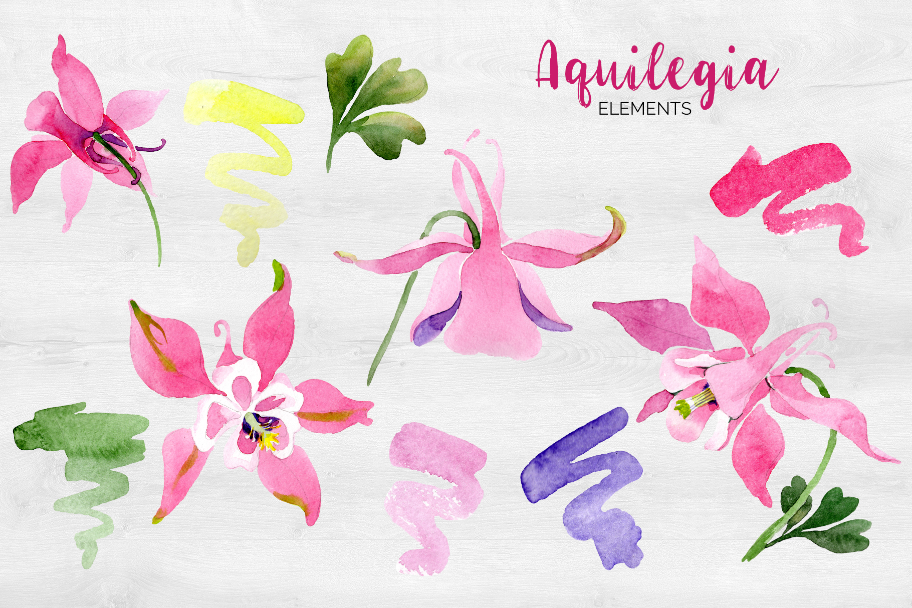 Flowers Aquilegia red, spring Watercolor png example image 2