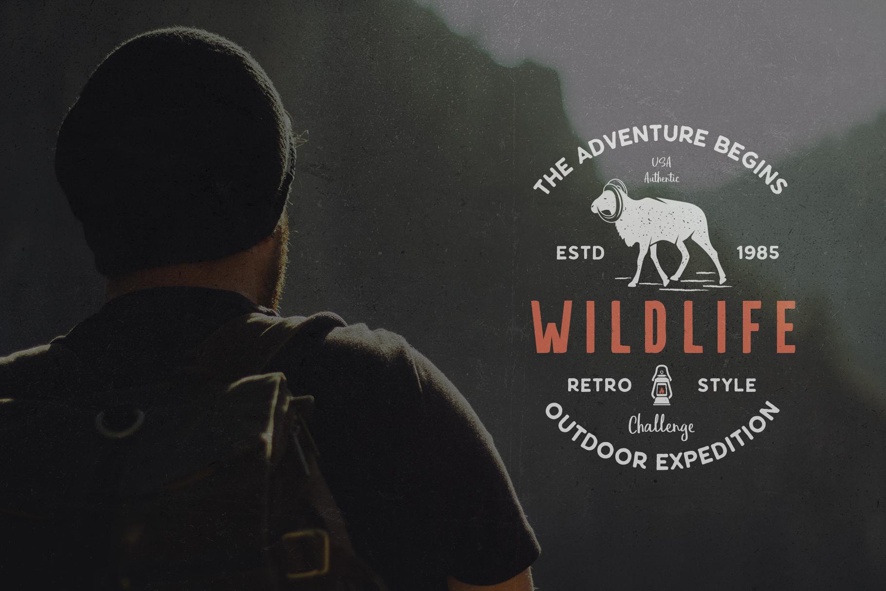 12 Wild Animals Badges Part 2 example image 8