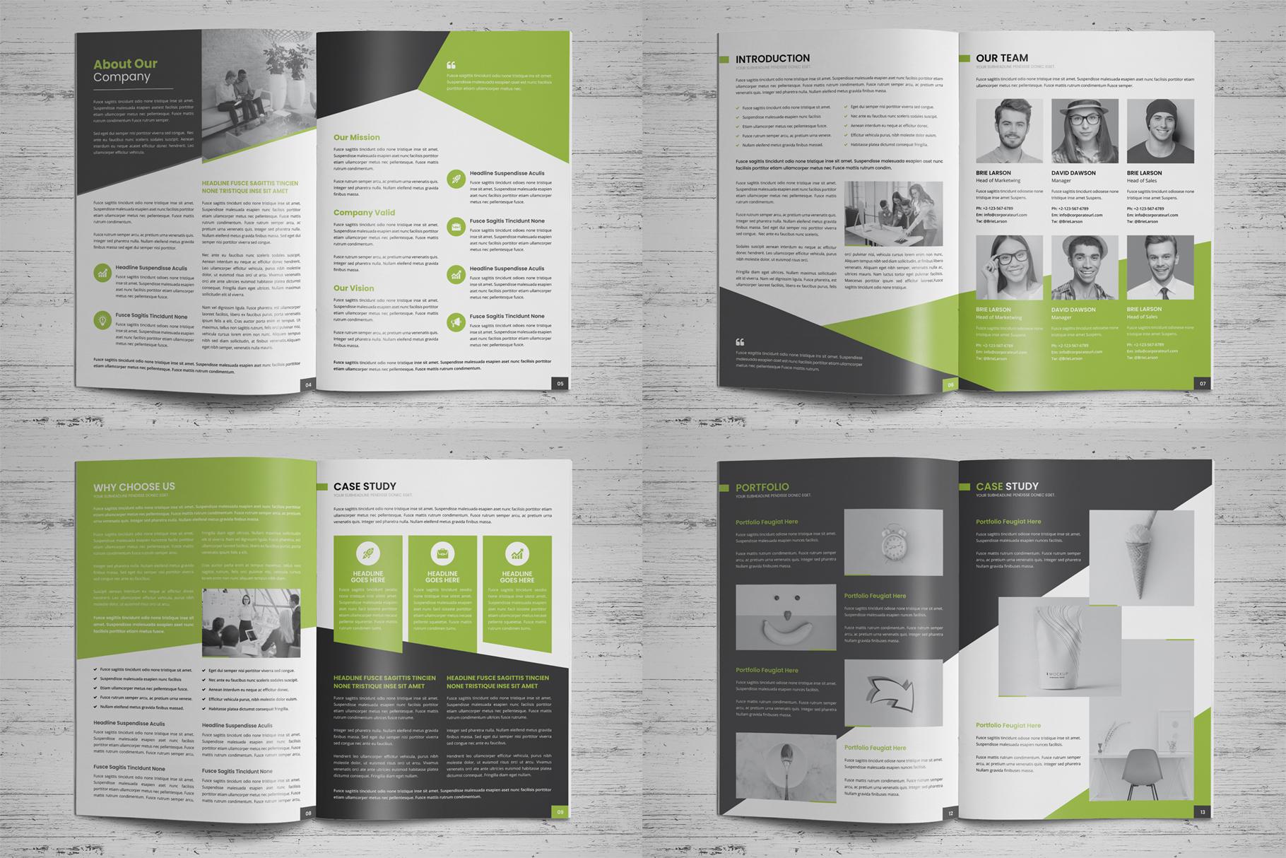 Company Profile Brochure v8 example image 17
