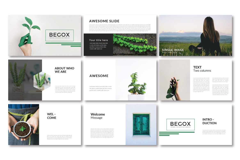 Begox Keynote Temp example image 2