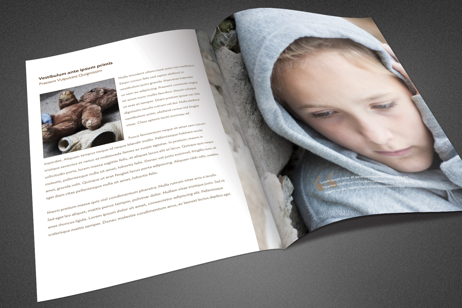 Charity Foundation Brochure Template example image 4