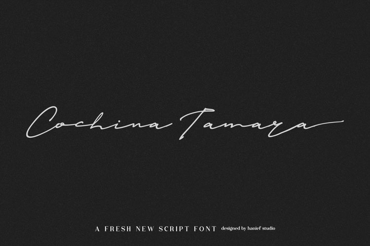 Janetta Silloam//Signature Font example image 6