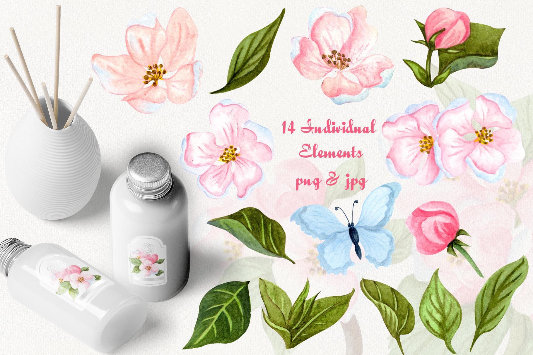 Apple Blossom Watercolor Clip ARt example image 2