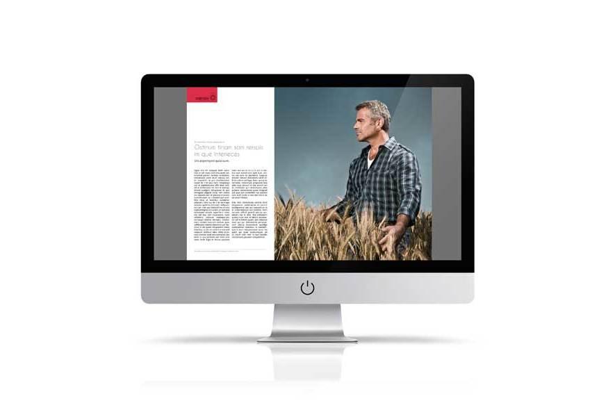Multipurpose Digital Magazine Template example image 5