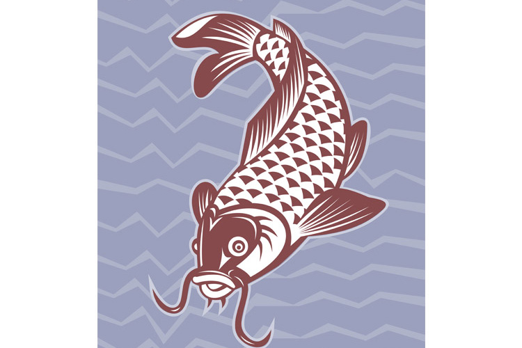 Koi carp swimming down example image 1