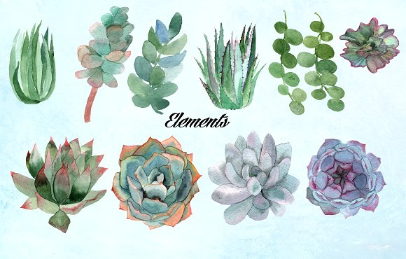 Watercolor Succulents Clip Art example image 3