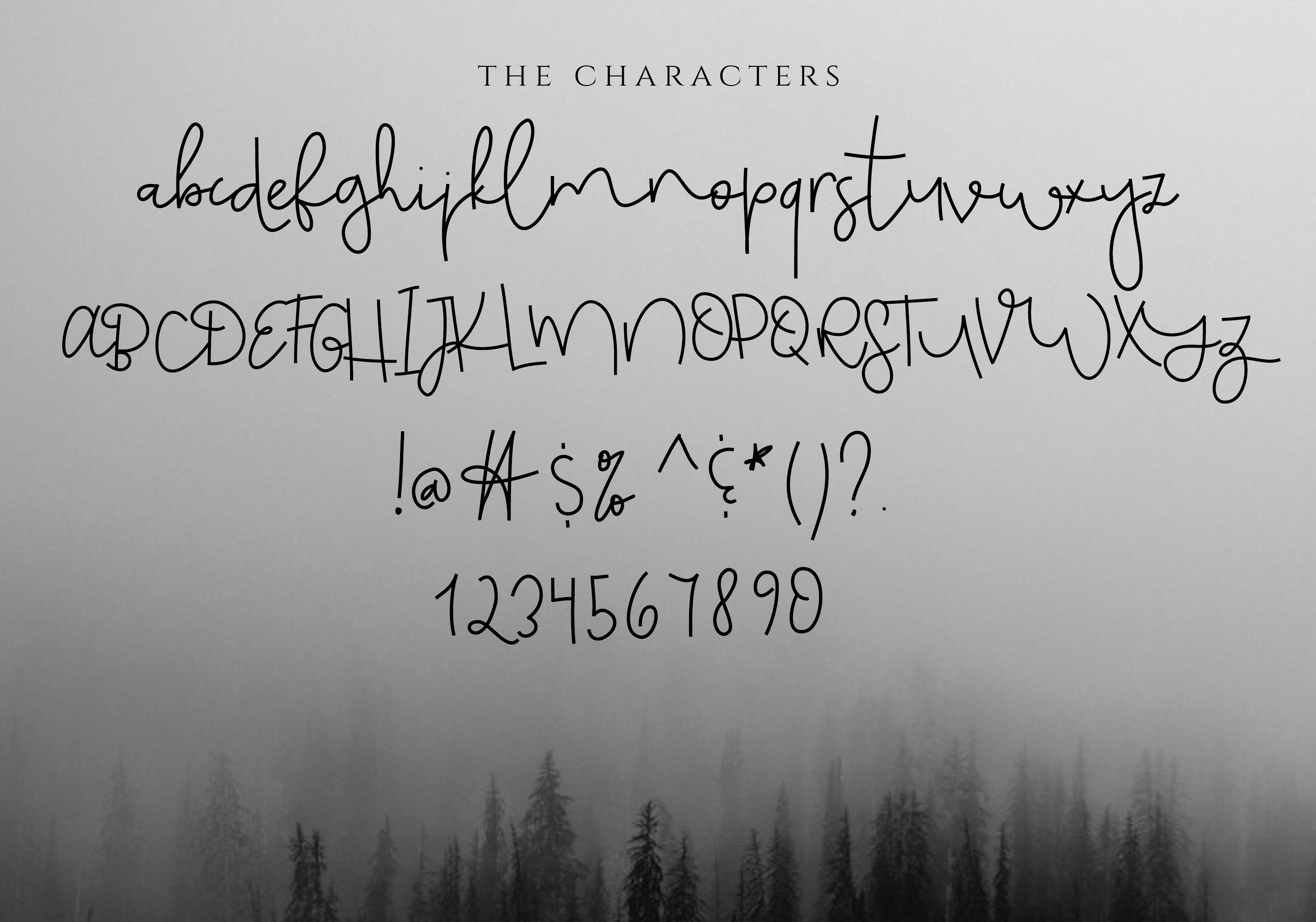 Monday Blues - Chic Handwritten Font example image 5