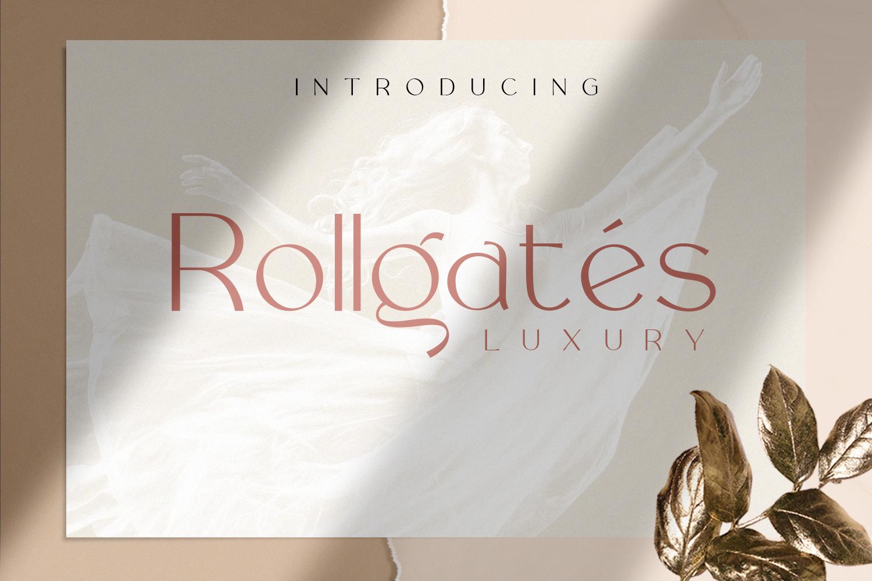 Rollgates Luxury example image 1