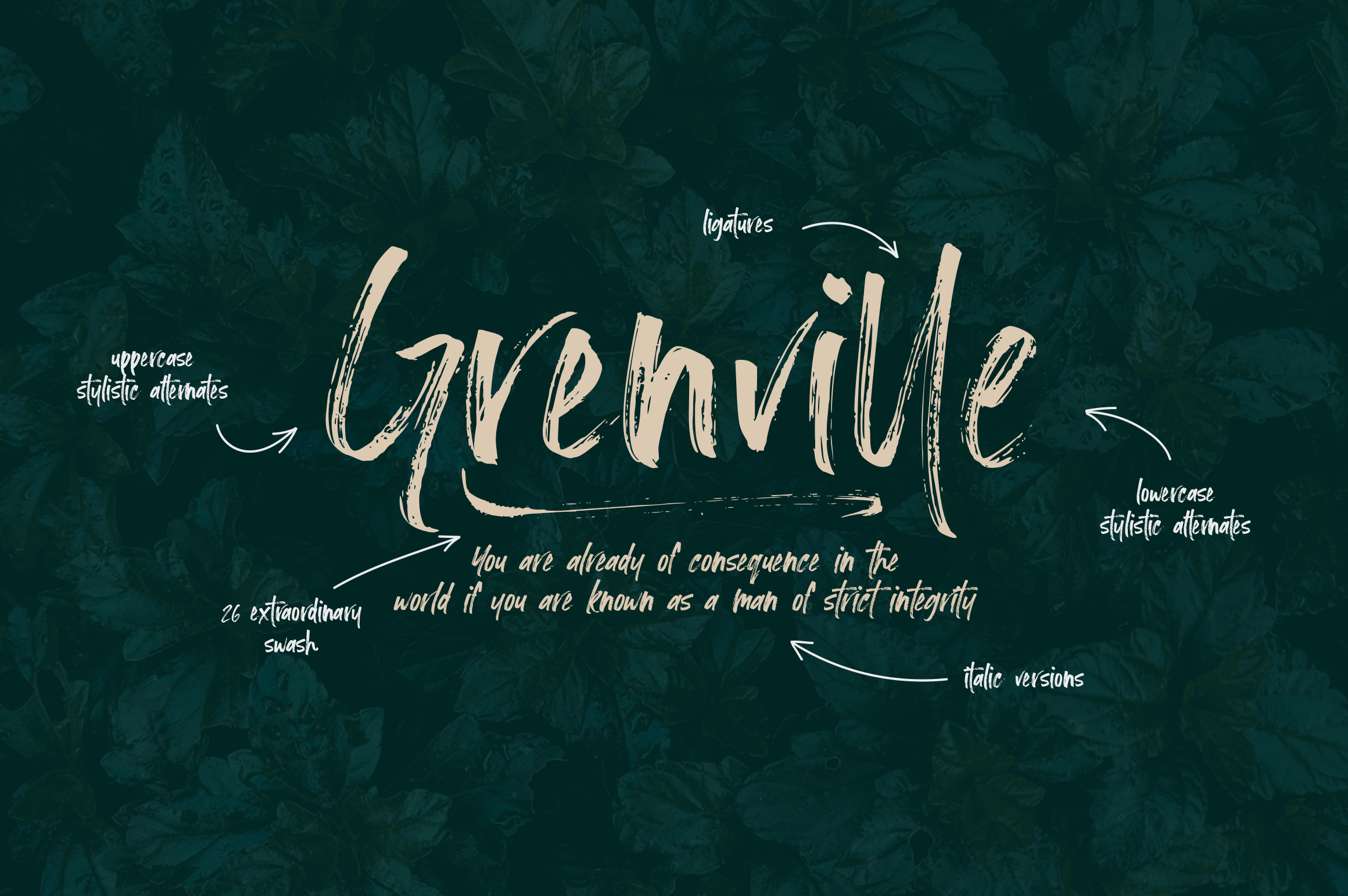 Loutters | Handwritten Brush Font example image 2