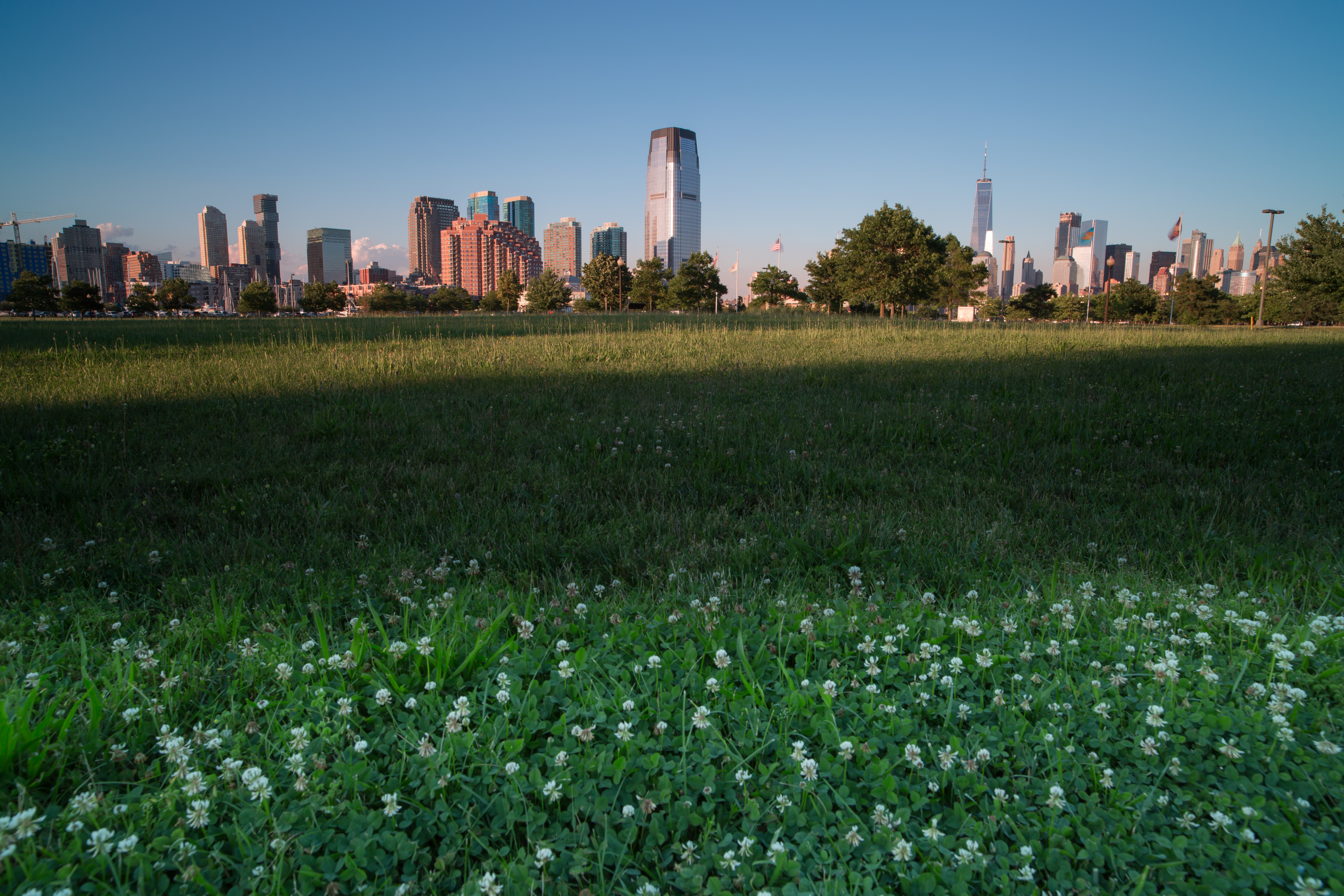 Jersey city from grass viewpoint example image 1