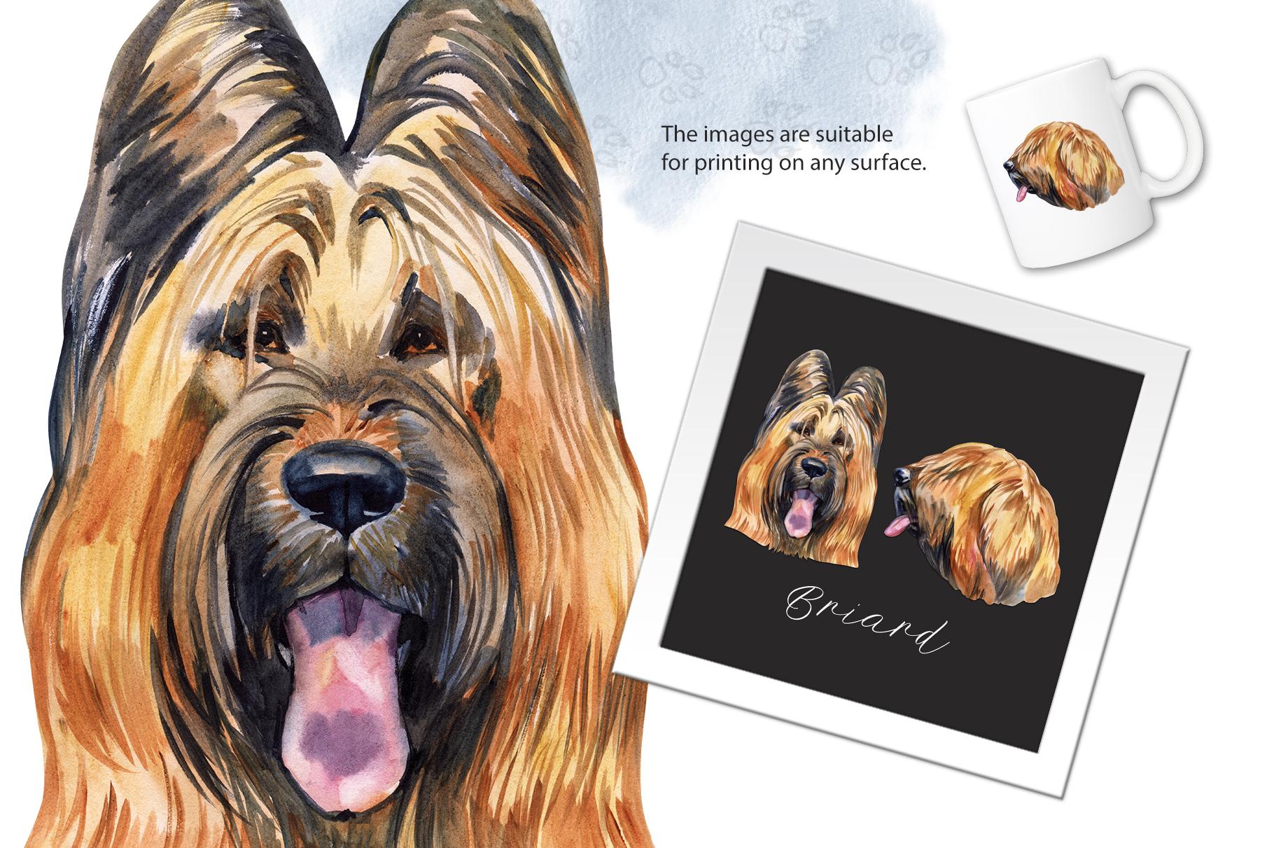 Watercolor dog. Briard example image 2