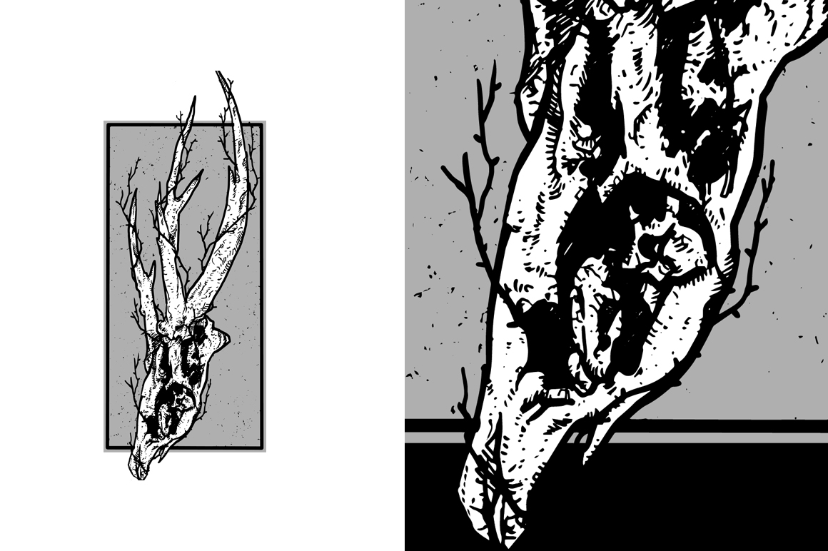 20 VECTOR skull illustration example image 5