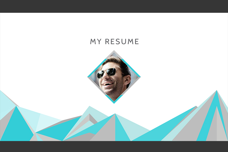 Resume Presentation Templates example image 13