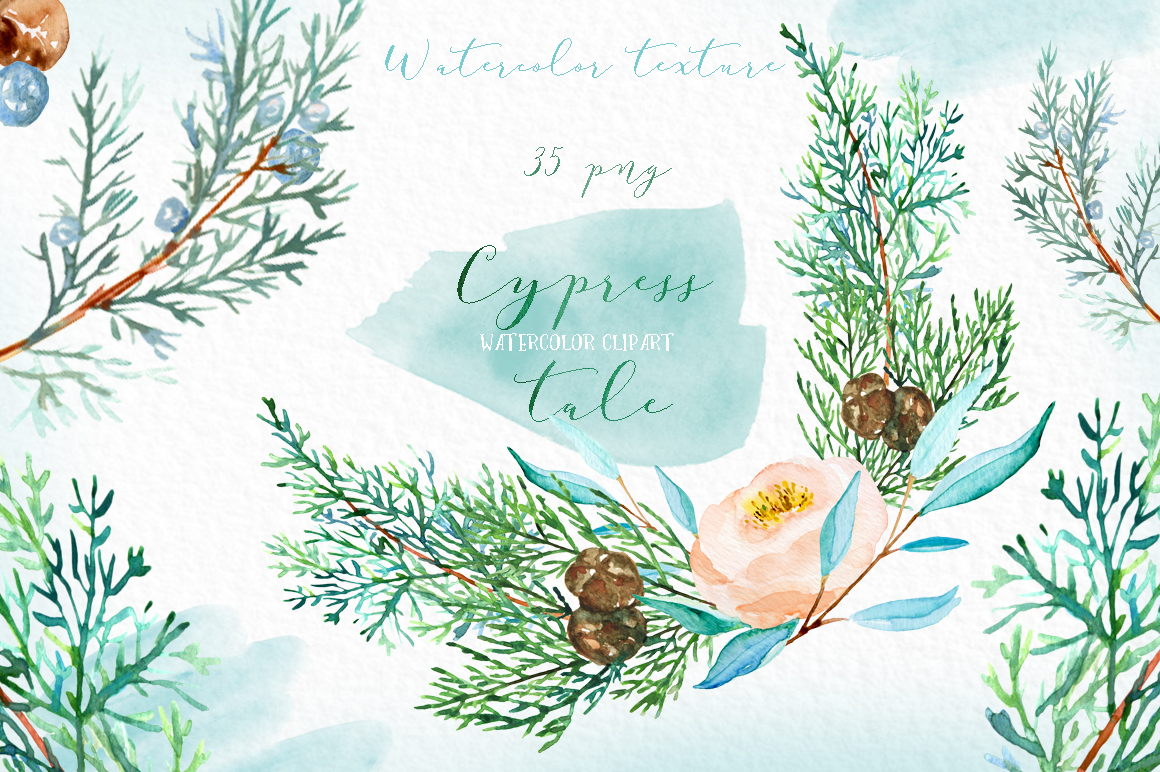 Cypress tale. Watercolor clipart. Cypress christmas branches example image 4