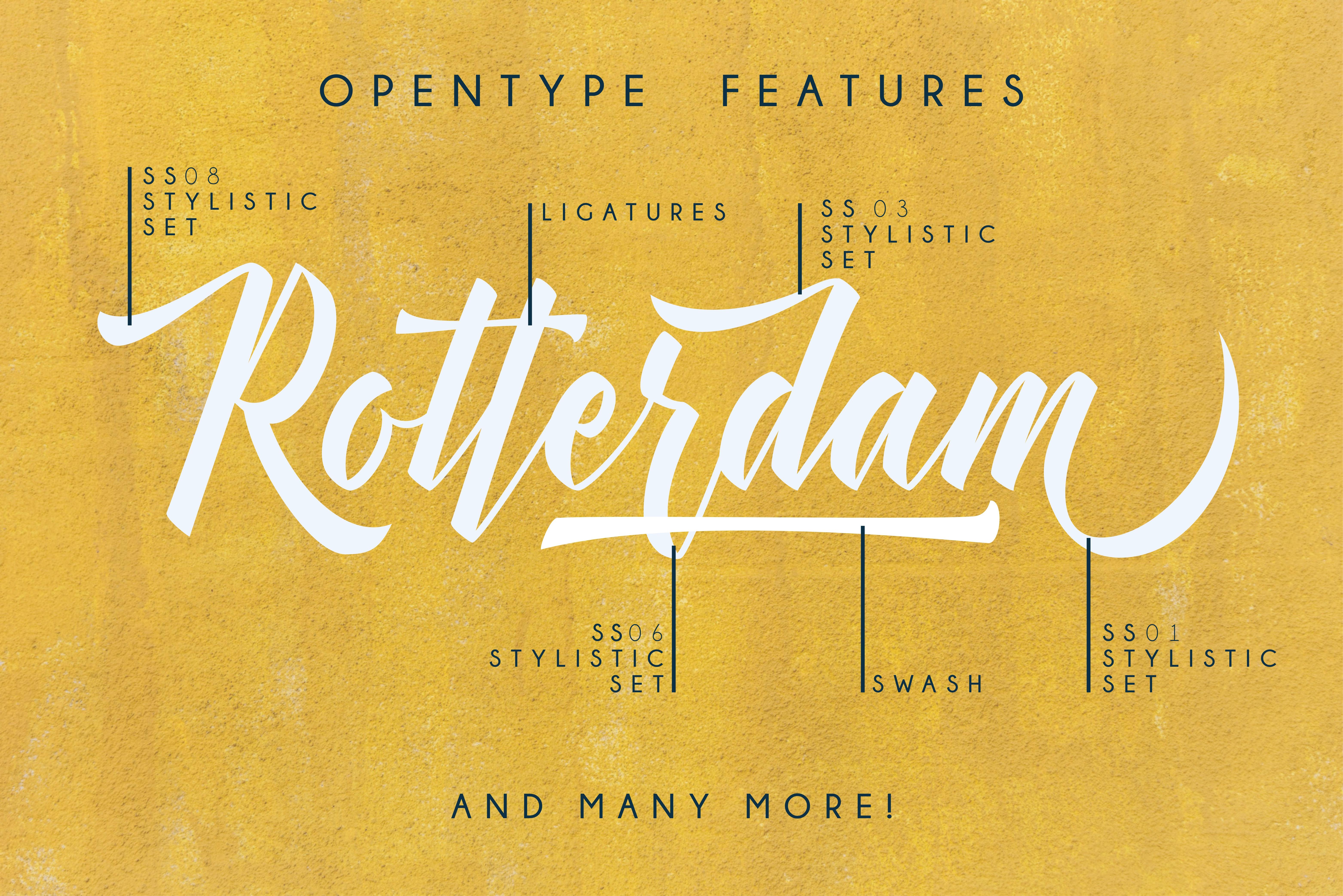 Manhattan Brush Script Font Swash example image 9