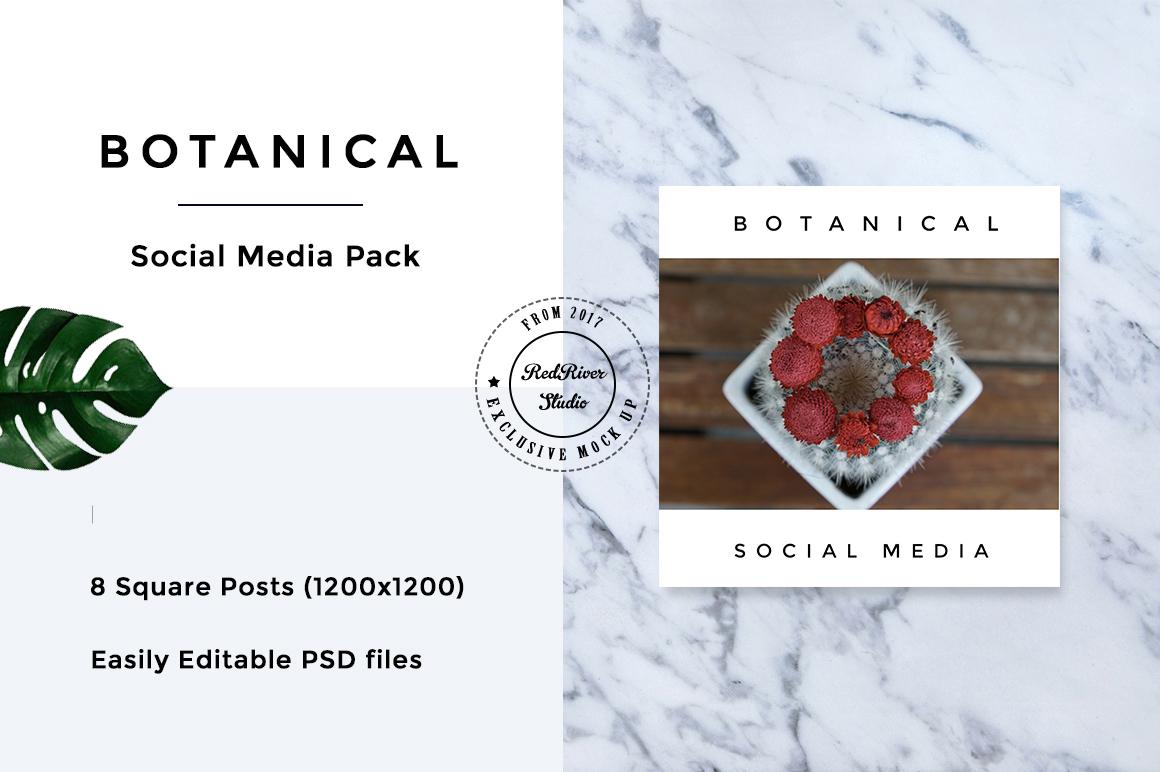 Botanical Social Media Pack example image 2