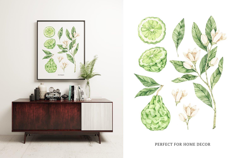 Organic LAB. Watercolor botanical illustrations example image 2