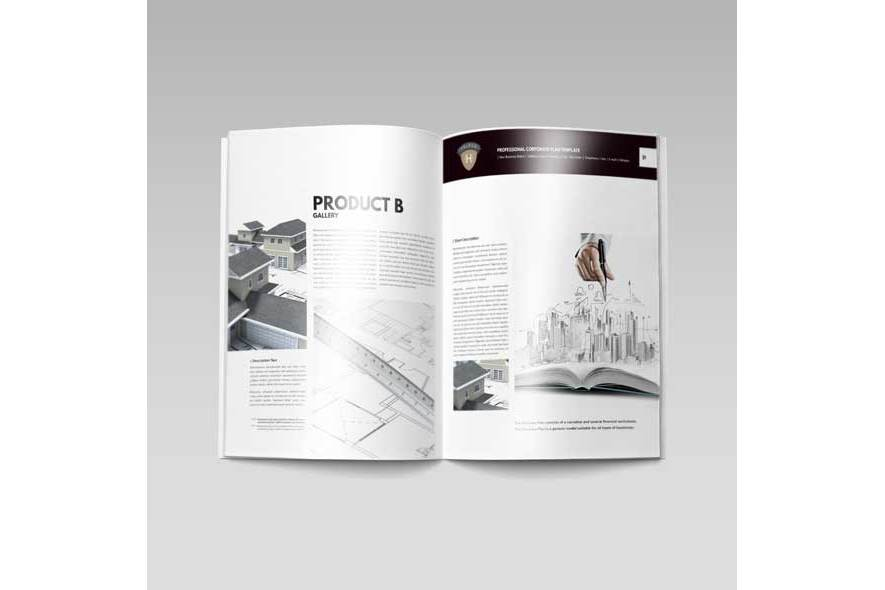 Professional Corporate Plan Template example image 4