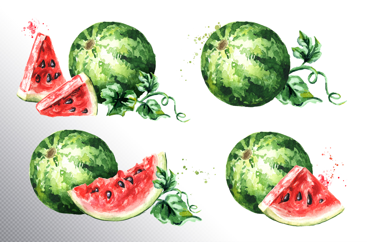 Watermelon. Watercolor collection example image 3