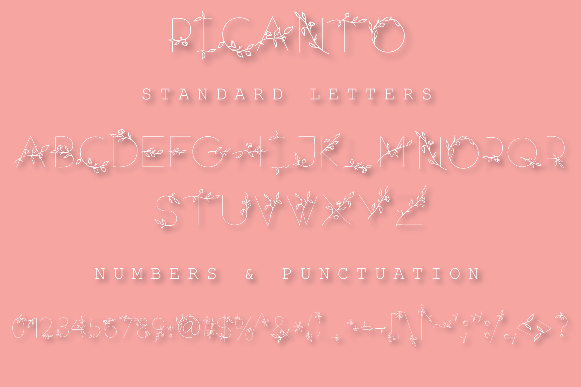 PICANTO - FLORAL FONT example image 2