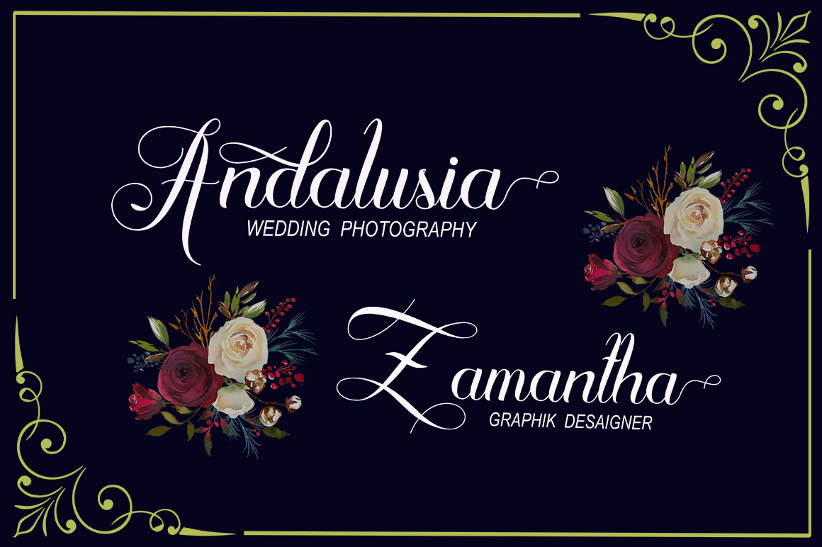 Algendria Modern Script Font example image 7
