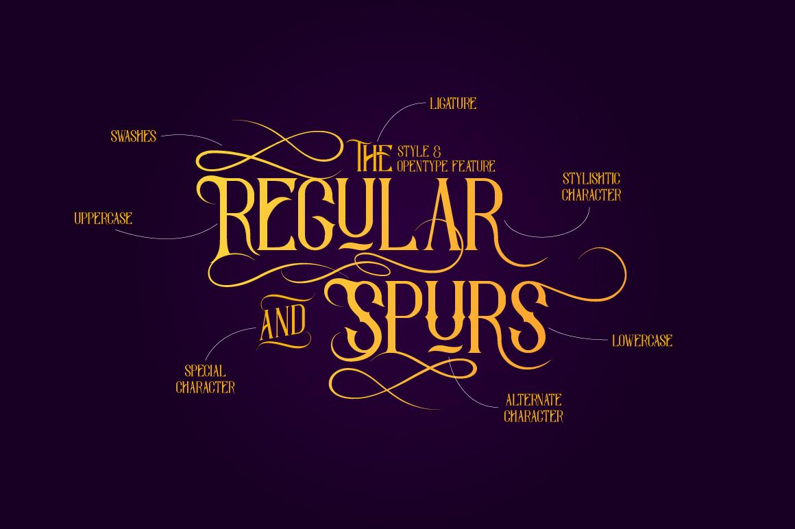 Savaro Typeface example image 2