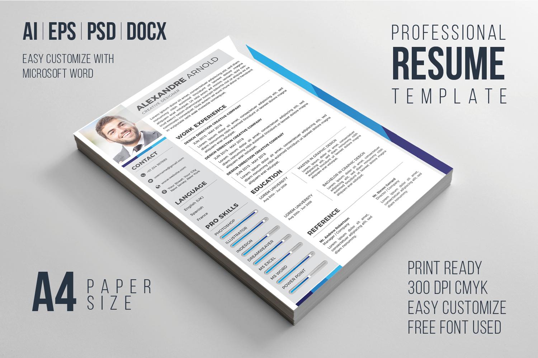 Resume PRO example image 1