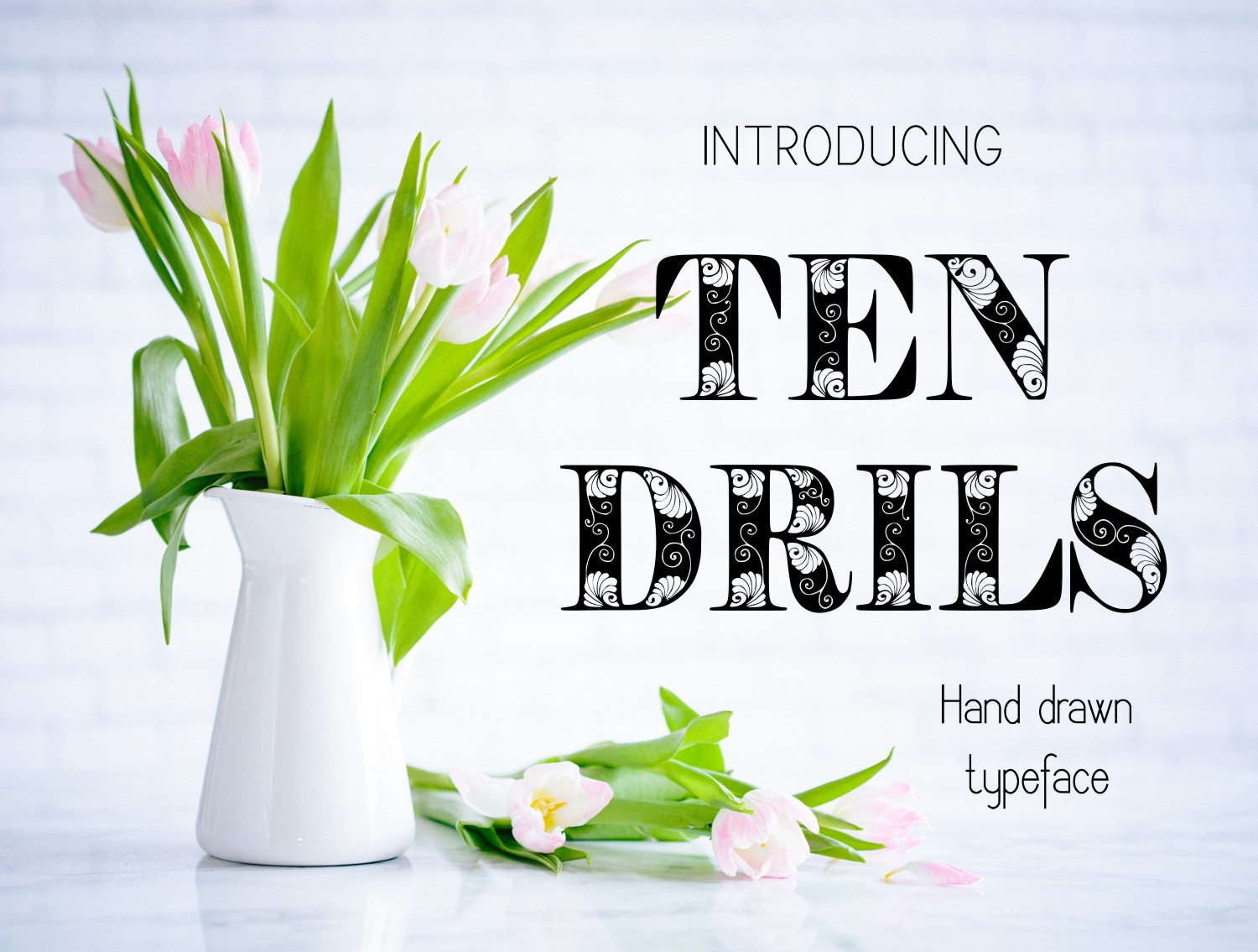 Tendrils font example image 1