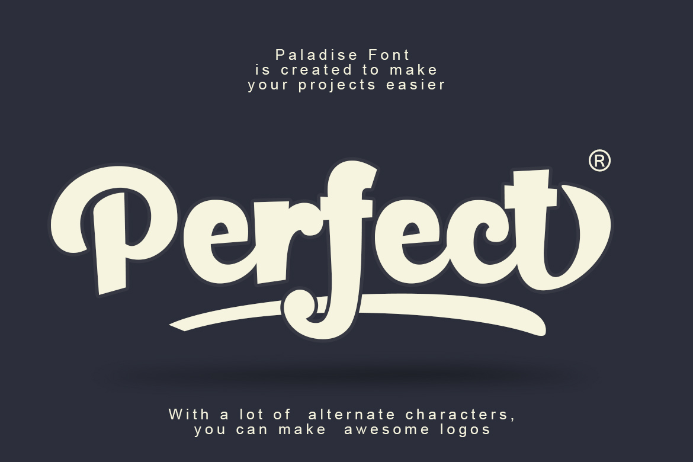 Paladise Font & Extras example image 4