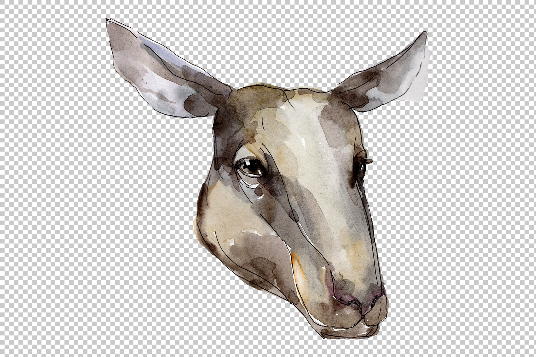 Farm animals Ram head Watercolor png example image 6
