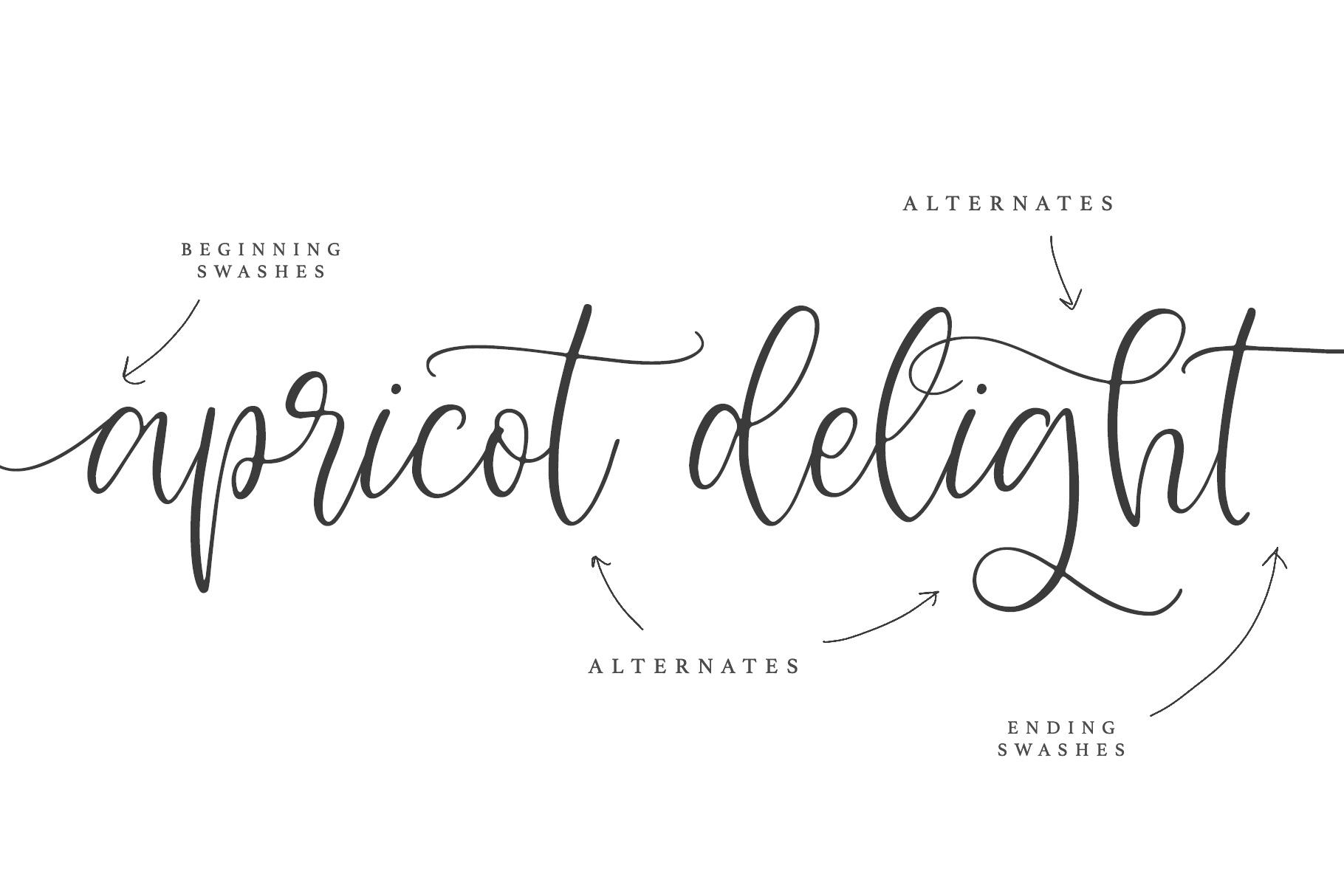 Apricot Delight | Romantic Script example image 5