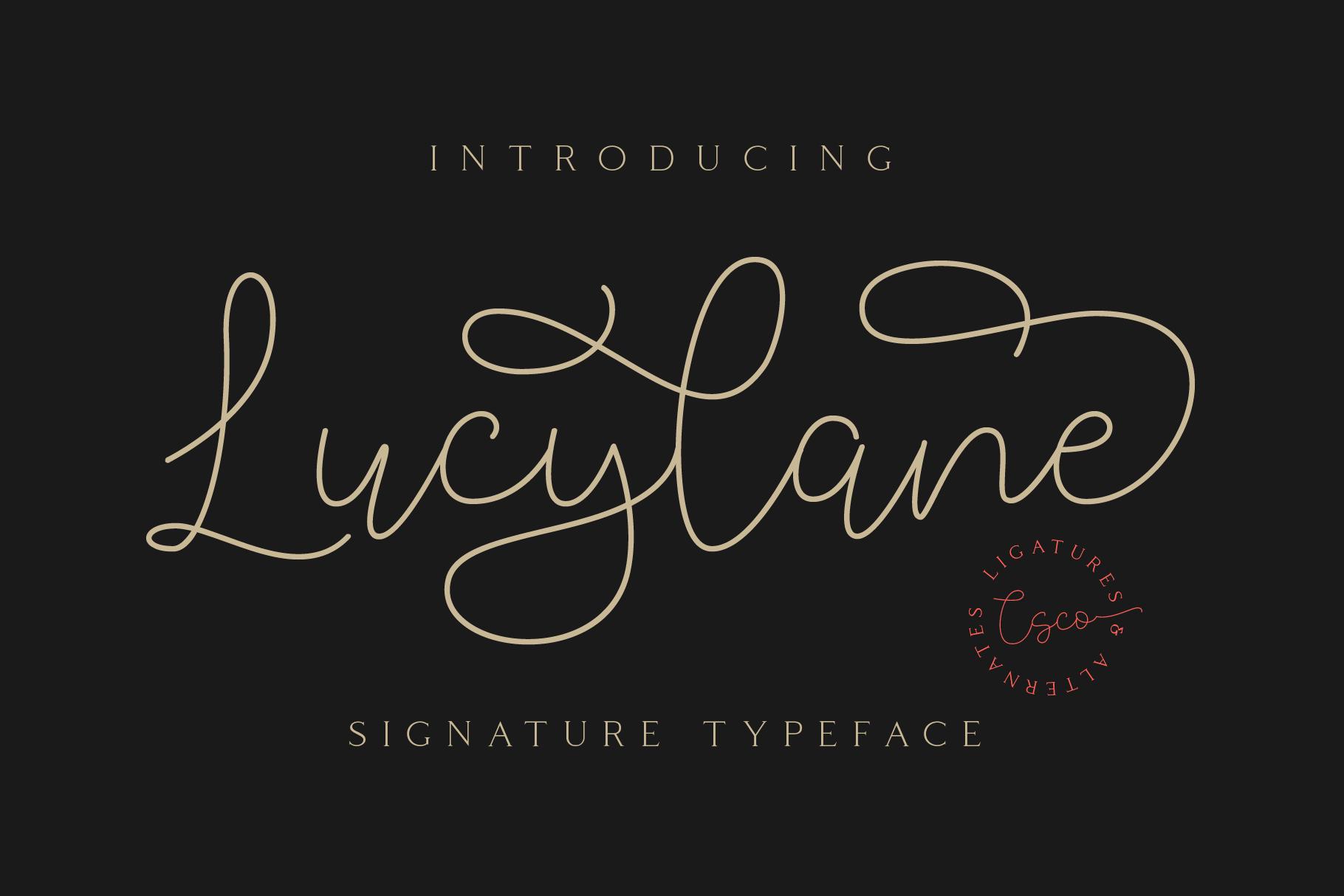 Lucylane - Signature Typeface example image 1