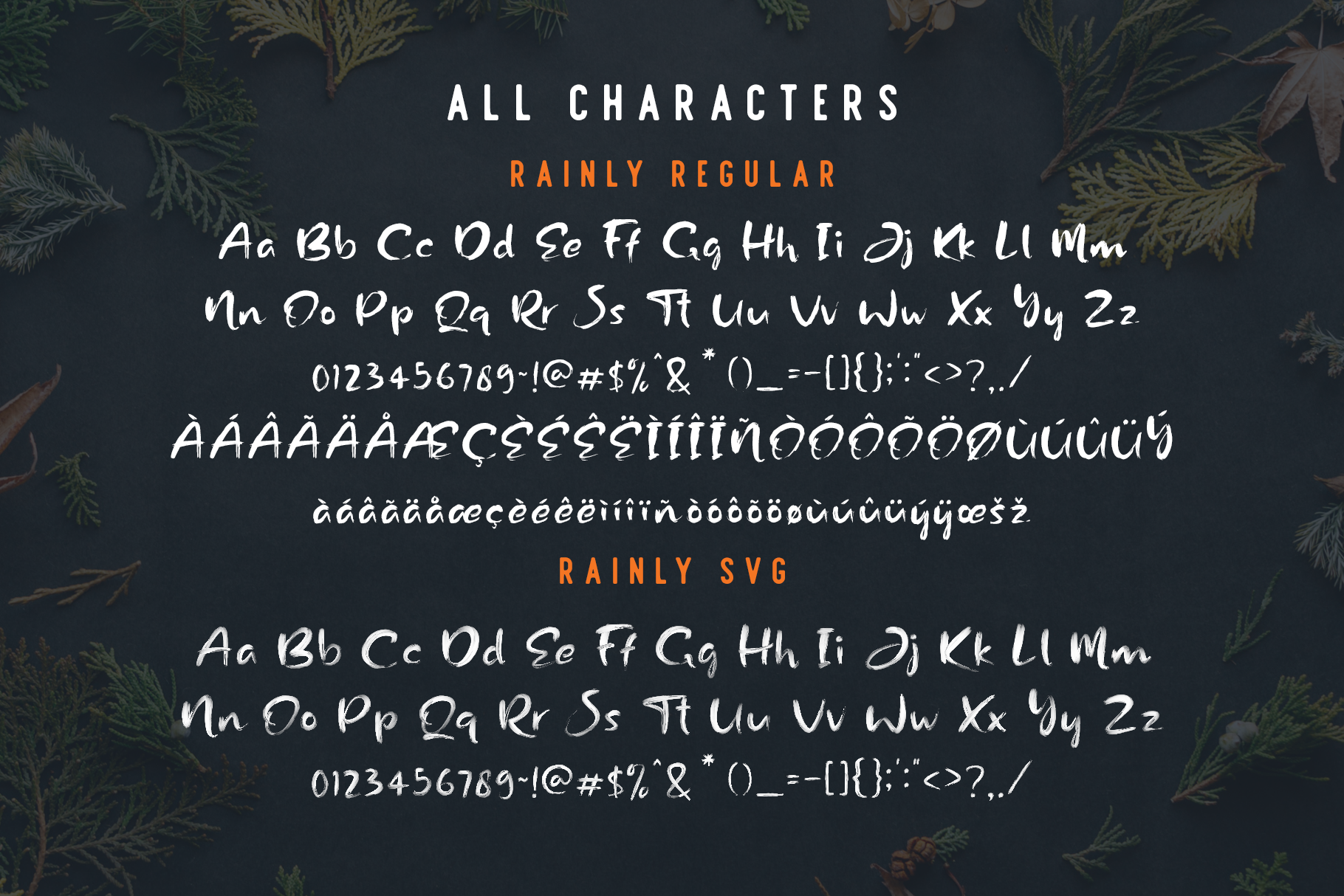 Rainly - Brush & SVG Font example image 7