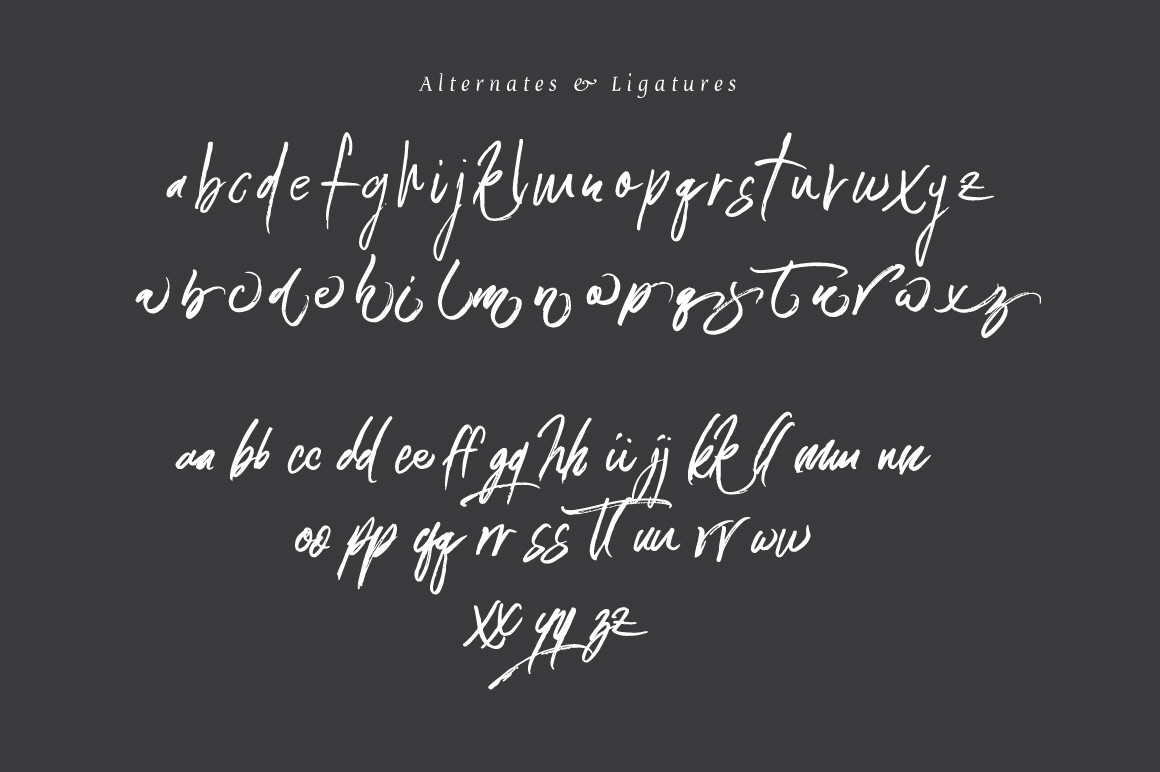 Connoisseurs Typeface example image 7