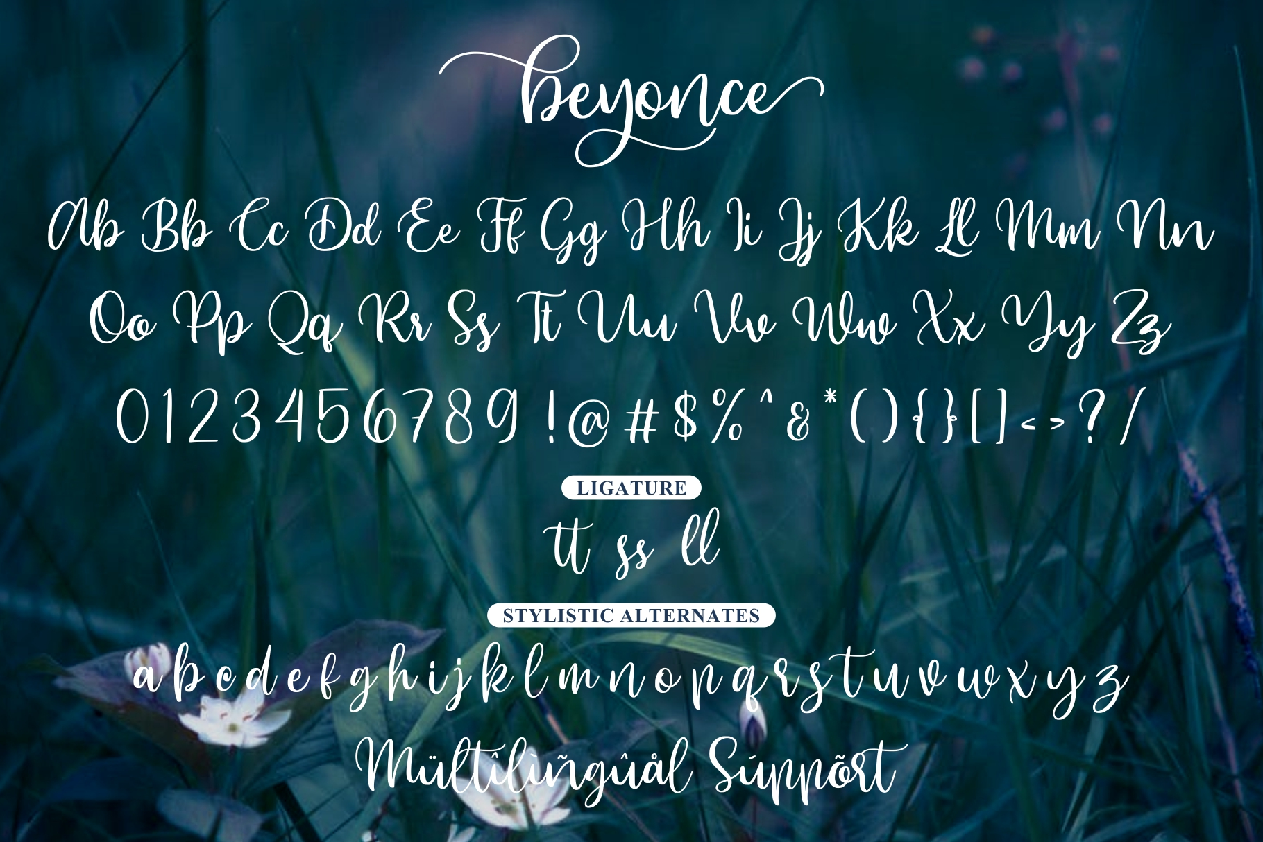 Beyonce - Beauty Font example image 7