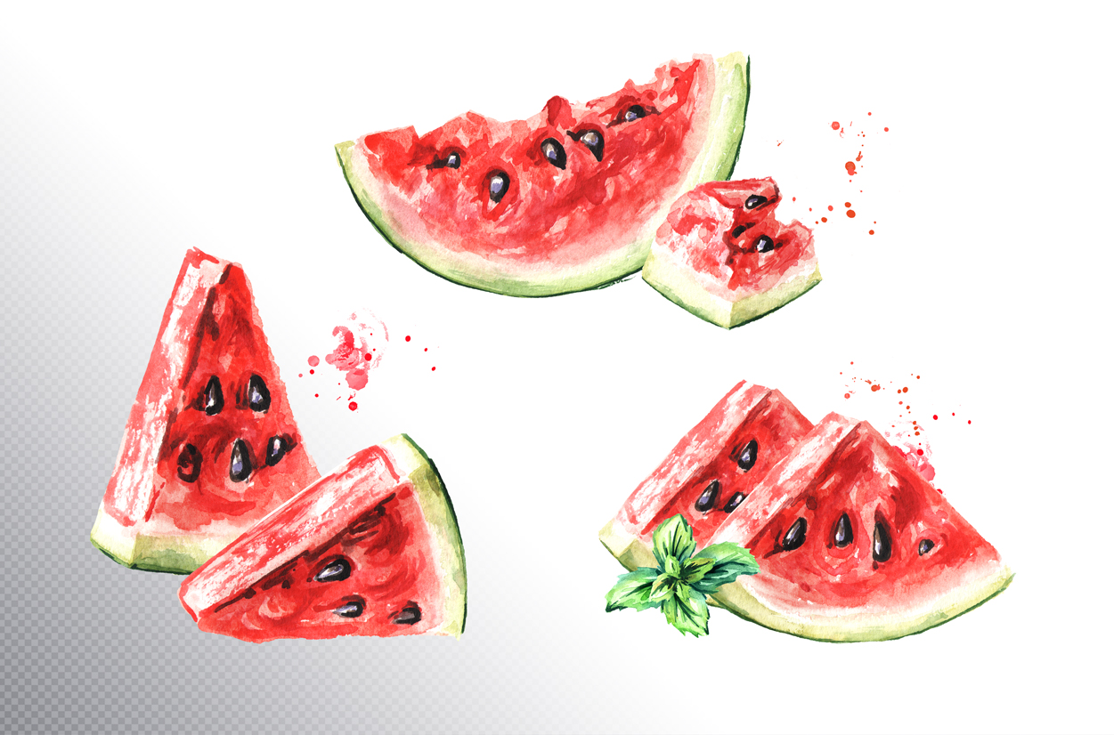 Watermelon. Watercolor collection example image 2