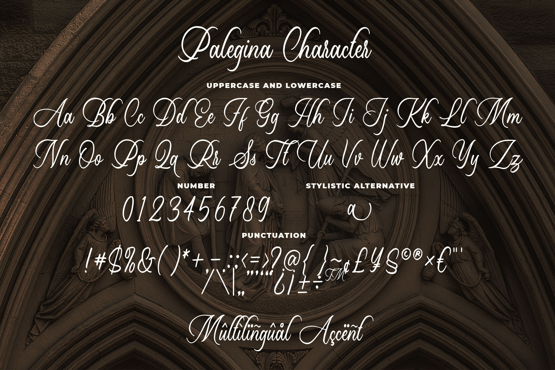 Palegina Calligraphy Typeface example image 3