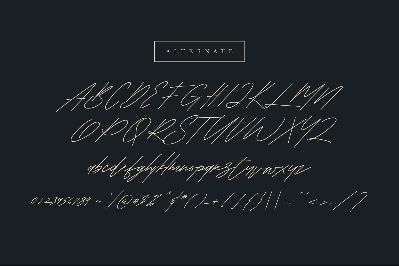 Shaloems Handwritten Signature Font example image 10