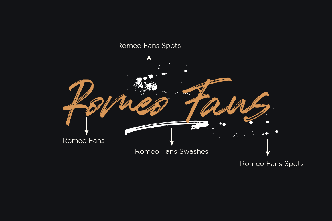 Romeo Fans / Natural Handmade Brush example image 9